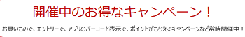 楽天ポイントキャンペーン.PNG