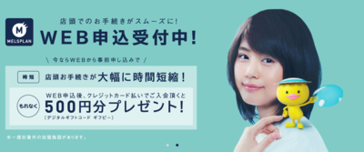 メルスプラン500円.PNG